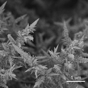 This is a scanning electron microscope image of the nanostructured syngas catalysts. Image: Michael Ross/Berkeley Lab.