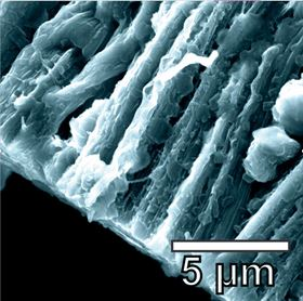 Lithium metal coats the hybrid graphene and carbon nanotube anode in a battery created at Rice University, thereby preventing the formation of dendrites. Image: Tour Group/Rice University.