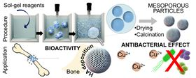 Schematic representation of the synthesis and function of Cu-containing MBG nanoparticles in bone repair.
