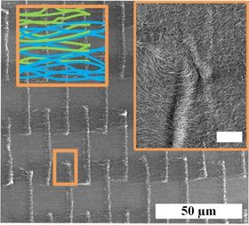 Scanning electron microscope images of the novel carbon nanotube (CNT) textile. The colored schematic shows the architecture of self-weaved CNTs, while the inset shows the inter-diffusion of CNTs among the different patches due to capillary splicing. Image: University of Illinois.