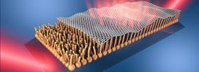 This illustration shows a layer of graphene supported on a fatty lipid monolayer. Image: Leiden University.