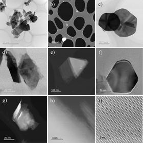 Transmission electron microscope images showing: a general view of two different 2H-WS2 nanoparticle sizes (a), (b); large 2H-WS2 plate-like NPs (c)(f); a small, irregular 2H-WS2 NP (g); atomic structure of the 2H-WS2 sheet and profile of a thin WS2 NP with several layers (h); and hexagonal arrangement of atoms in a 2H-WS2 sheet (i). Pictures (a), (c), (d), (f) and (i) are BF images, while (b), (e), (g) and (h) are HAADF images.