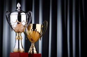 Annual National Association for Surface Finishing awards program recognizes commitment and dedication of industry supporters.