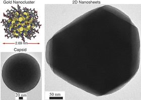 These images show the 2D hexagonally-ordered layers and the 3D capsid structures produced by the self-assembling gold nanoclusters. The inset in the top left corner shows the atomic structure of a gold nanocluster.
