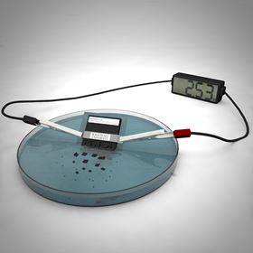 ISU scientists have developed a working battery that dissolves and disperses in water. Image: Ashley Christopherson.