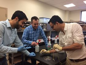 Navid Kazem (left), Jonathan Malen (center) and Carmel Majidi (right) demonstrate the elasticity of a strip of thubber, a thermally conductive rubber material that represents a breakthrough for creating soft, stretchable machines and electronics. Photo: Lisa Kulick.