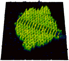 High-resolution and high-speed AFM with simultaneous advanced optical microscopy