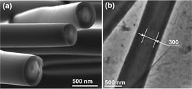 (a) A FESEM image of the cross-section of a fiber and (b) a TEM image of the same.