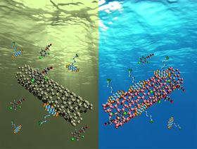 These images show how single-walled carbon nanotubes can filter dirty water. Images: John-David Rocha and Reginald Rogers.