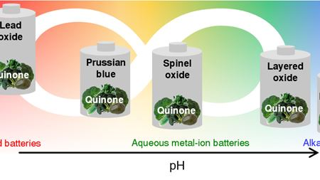 Many batteries could benefit from quinone anodes