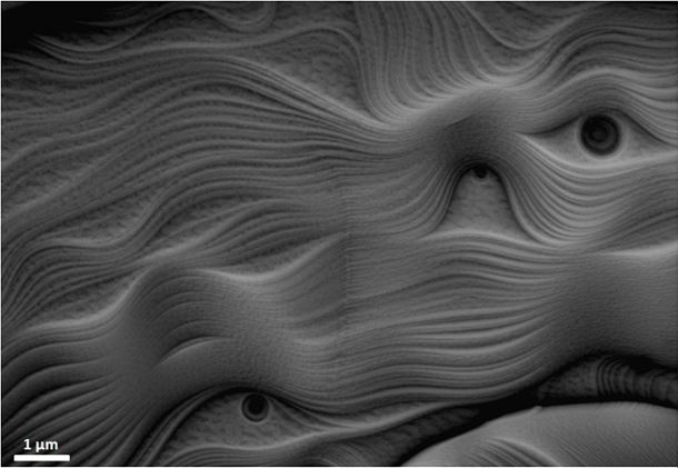 Strange eyes and curves observed on the surface of a UO2 sintered pellet after a compression creep test performed at 1500°C, under an Ar + 5% H2 atmosphere