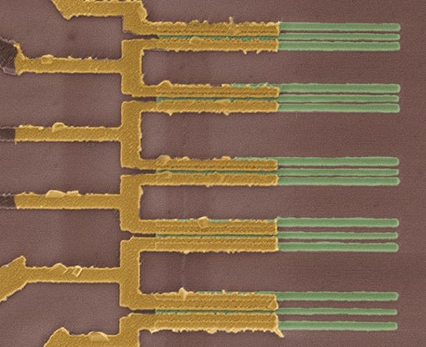 Figure 1 False-colored scanning electron microscope image showing a set of end-contacted nanotube transistors fabricated on the same nanotube with contact geometries ranging from sub-10 nm to 60 nm. (Credit: IBM Research.)