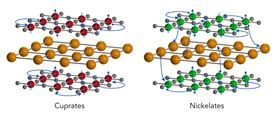 Both cuprates and nickelates comprise 2D oxide planes (red, green and grey spheres represent copper, nickel and oxygen ions, respectively) separated by layers of a rare-earth material (gold spheres). Cuprates are inherent insulators, and even when they're doped to add free-flowing electrons (blue spheres), their electrons rarely leave to interact with other layers of the material. Nickelates, on the other hand, are inherent metals; even in the non-doped state, their electrons mix with electrons from the rare-earth layers in a way that creates a 3D metallic state. Image: Greg Stewart/SLAC National Accelerator Laboratory.