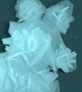 This scanning electron microscope image shows a flake of the 2D electrocatalyst, made of a transition metal and sulfur, which was developed at Rice University. Image: Yakobson Group/Rice University.