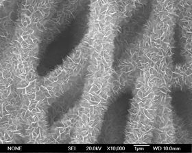 Carbon/V2O5 core/sheath nanofibers (used as battery electrode material).