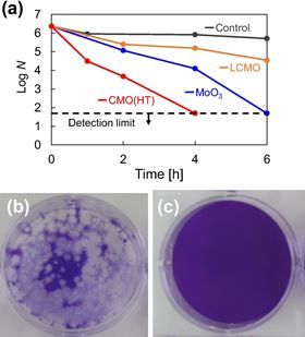 (a) Antiviral activity of prepared powders against coronavirus. (b and c) Photos showing the change in plaque number of coronavirus after four hours: (b) control and (c) with CMO. Image: Material Letters.