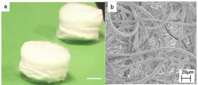 Picture of piezoelectric scaffolds. Scale bar = 2 mm (A). Scanning electron microscope (SEM) image of piezoelectric scaffold showing fibrous structure at 2000 magnification. Scale bar = 20 microns (B).