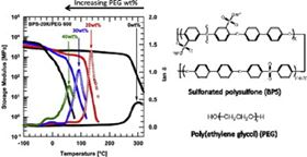 Thermal analysis of disulfonated poly(arylene ether sulfone) plasticized with poly(ethylene glycol) for membrane formation