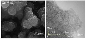 These microscope images at different magnifications show cobalt-doped molybdenum disulfide as grown on a carbon cloth.  Image: Lou Group/Rice University.