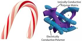 This image shows the candy cane-like structure of the new polymer supercapacitor. Image: Stoyan Smoukov.