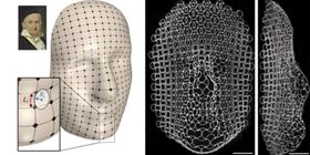 The ribs in the different layers of the lattice are programmed to grow and shrink in response to a change in temperature, mapping the curves of Gauss' face (top left). Images courtesy of Harvard SEAS.