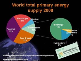 World total primary energy supply 2008.