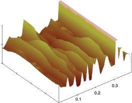 Atomic force microscopy image of NGPs.