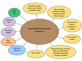 Figure 4: Factors that influence on the performance of natural fibre bio-composites.