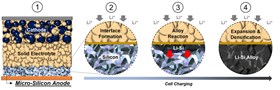 1) The all-solid-state battery consists of a cathode composite layer, a sulfide solid-electrolyte layer and a carbon-free micro-silicon anode. 2) Before charging, discrete micro-scale silicon particles make up the energy-dense anode. During battery charging, positive lithium ions move from the cathode to the anode, and a stable 2D interface is formed. 3) As more lithium ions move into the anode, it reacts with the micro-silicon to form interconnected lithium-silicon alloy (Li-Si) particles. The reaction continues to propagate throughout the electrode. 4) This reaction causes expansion and densification of the micro-silicon particles, forming a dense Li-Si alloy electrode. The mechanical properties of the Li-Si alloy and the solid electrolyte play a crucial role in maintaining the integrity and contact along the 2D interfacial plane. Image: University of California San Diego.