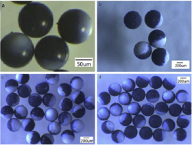Optical images of Janus microspheres of different sizes and morphologies.