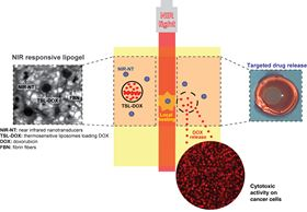 Novel near-infrared (NIR) responsive lipogel technology, based on a composite system, that delivers therapeutic agents in a controlled manner.