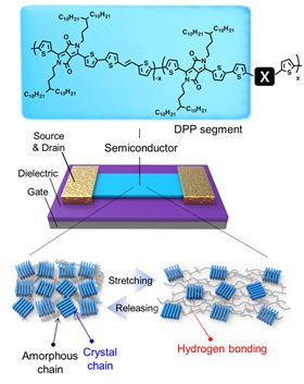 Figure 1. Design of stretchable and healable semiconducting polymer device.