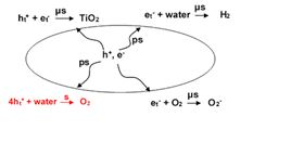 Basic steps in artificial photocatalytic water splitting and four-hole chemistry for oxygen production.