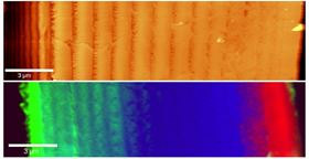 AFM topography (top) and Raman (bottom) images of the cuticle of a Crustacea. The  Raman image reveals the distribution of amorphous Calcium carbonate phases (red & blue) along with additional organic compounds (green).