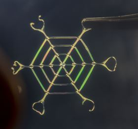 This web of silk nanofibers produced by the new bioinspired process was able to sustain a load 4000 times its own weight. Photo: Silk Lab/Tufts University.