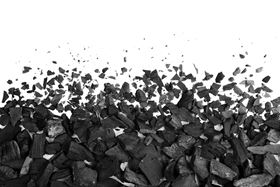 The project aims at developing knowledge of bio-coal in order to replace as much fossil coal as possible.