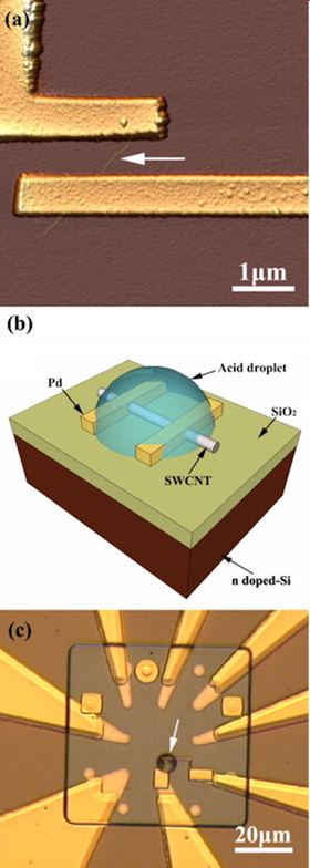 (a) Typical atomic force microscopy image of an individual-SWCNT-based field emission transistor (FET) device as sketched in (b). The arrow indicates the location of the individual SWCNT contacted by two Pd electrodes. (b) Sketch of the device while the SWCNT is doped in situ by the deposition of a sulfuric acid micro-droplet onto the device. (c) Optical image showing the actual chip and the acid micro-droplet (arrowed). Thanks to this experiment, both the doping effect by H2SO4 and the role of physisorbed species at the SWNT/Pd contact lines on the electronic behavior of metallic and semi-conducting SWCNTs were revealed. Reproduced from reference [4].