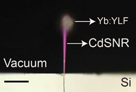 An image of the team's experimental setup, taken using a bright-field microscope. The silicon platform, labeled 'Si', is shown in white at the bottom of the image. The nanoribbon of cadmium sulfide is labeled 'CdSNR'. At its tip is the ceramic crystal, labeled 'Yb:YLF'. Scale bar is 20µm. Image: Pant et al. 2020, Nature Communications.