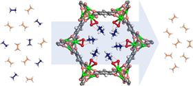 This is an illustration of the novel iron-based metal-organic framework decorated with peroxo groups (red and green), which can capture ethane (blue molecules) while allowing ethylene (peach molecules) to pass through. Image: Wei Zhou/NIST.