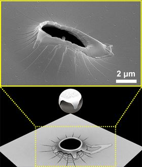 (Top) Scanning electron microscope image of the perforation and melted rim region around the hole formed by the projectile and (bottom) a corresponding schematic.