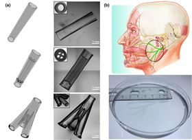 (a) Various NGC CAD designs (left column) and the corresponding 3D-printed NGCs (right column). (b) 3D-printed human life-size NGC; the facial nerve schematic on top was adapted from Atlas of Human Anatomy (p. 124, 6th Ed.), by F. H. Netter, 2014, Philadelphia, PA: Saunders. Copyright 2014 by Saunders, an imprint of Elsevier.