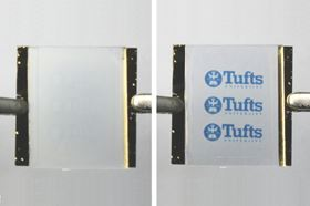 Passing a voltage across a heating element connected to the silk bilayer expands the material and erases the wrinkle pattern (left). Cutting off the voltage allows the material to cool, causing the wrinkle pattern to re-appear (right). Photo: Fio Omenetto, Tufts University.