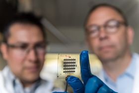 Georgia Tech's Canek Fuentes-Hernandez (left) and Bernard Kippelen (right) examine an organic thin-film transistor created with the new nanostructured gate dielectric. Photo: Rob Felt, Georgia Tech.