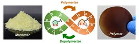 The novel polymers made from lipoic acid are easily depolymerized under mild conditions. Image: Qi Zhang, University of Groningen.