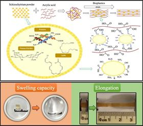 The mechanism of bio-based polymers formation and the new hybrid materials' outstanding swelling and viscoelastic properties. Image courtesy of Gabriela Palestino, Universidad Autónoma de San Luis Potosí.