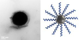 Left: a single liquid metal nanodroplet grafted with polymer chains. Right: Schematic of polymer brushes grafted onto the oxide layer of a liquid metal droplet. Image: Carnegie Mellon University.