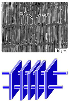 This image shows the unique 'cross-lamellar microstructure' that can be developed in the niobium disilicide/molybdenum disilicide two-phase alloy by adding minute amounts of chromium and iridium. Image: Osaka University.