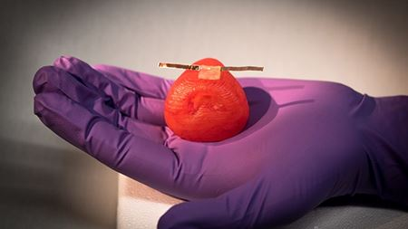 Silicone inks allow researchers to print life-like artificial organs