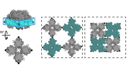 Experiment and computation combine for 2D protein crystal