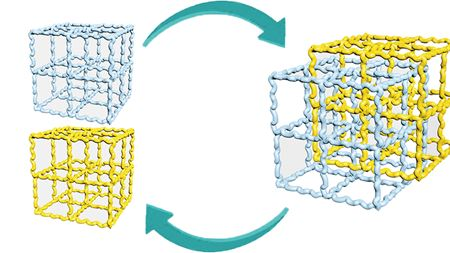 Reversible fusion and defusion of immiscible polymers starting from crosslinked networks